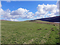 NG2557 : Waternish Farm grassland by Richard Dorrell