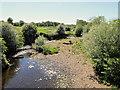 SD5040 : River Brock by David Dixon