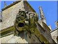 SU0061 : Gargoyle, Church of St Mary, Devizes by Brian Robert Marshall