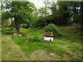 SU4603 : Jojo's Garden, Fawley by Terry Shaw