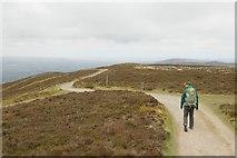 SJ1662 : Offa's Dyke path on Moel Famau by Mark Anderson