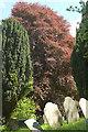 SX4053 : Graveyard, St John by Derek Harper