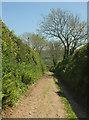 SX7248 : Green lane to the Avon valley #2 by Derek Harper