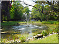 SJ4268 : Pond at Hoole Hall by Des Blenkinsopp