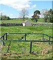NY7005 : St Helen's Well by Gordon Hatton
