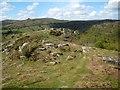 SX6971 : Dartmoor: Bench Tor (2) by Nigel Cox