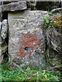 SO9700 : Milestone Thames & Severn canal, Coates by Mr Red