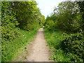 TL1126 : Wardswood Lane, Lilley by Humphrey Bolton
