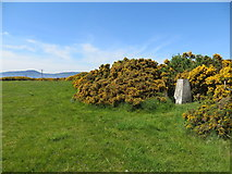 NH7149 : Triangulation pillar near Alturlie Point by John Ferguson