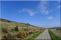 NC8953 : Unnamed road passed Trantlemore by Tim Heaton