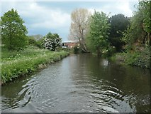 SK5802 : The River Soar / Grand Union Canal [Leicester section] by Christine Johnstone