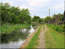 SD7909 : Manchester, Bolton and Bury Canal, Lower Hinds by David Dixon