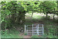 ST1584 : Gate next to large beech tree by M J Roscoe