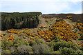 NC9411 : A View across Glen Loth by Chris Heaton