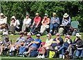 SZ5087 : Cricket spectators at Newclose by John Sutton