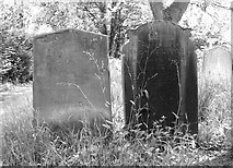TG2408 : Graves in Section F by Evelyn Simak