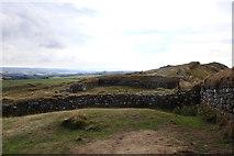 NY7868 : Milecastle 37, Hadrian's Wall by Rudi Winter