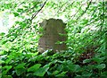 TG2408 : The grave of John Towler by Evelyn Simak