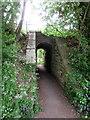 SJ2642 : Underpass by John H Darch