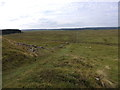 NY7868 : The Pennine Way at Turret 37a (Rapishaw Gap) by Rudi Winter