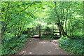 ST1986 : Gate and stile, Rhymney Valley Ridgeway Walk by M J Roscoe