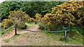 NZ4700 : Blocked Public Bridleway by Mick Garratt