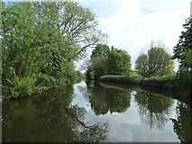 SK5907 : Navigable River Soar, looking downstream by Christine Johnstone