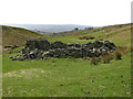 NY8446 : Ruined sheepfold in Middle Hope by Mike Quinn