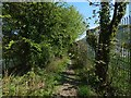 NS3977 : Path beside the Kilmalid works by Lairich Rig