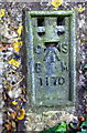 SK7824 : Benchmark on Bridge WAB8 over dismantled railway by Roger Templeman
