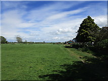 SE7576 : Grassland at Great Habton by Jonathan Thacker