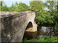 SD4947 : River Wyre, Gubberford Bridge by David Dixon