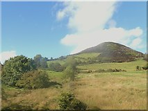J0125 : Rough grazing land between the B30 and Sugar Loaf Hill by Eric Jones
