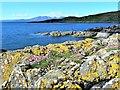 NS1152 : Glencallum Bay - Isle of Bute by Raibeart MacAoidh