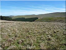 SJ0231 : Moorland above the Nant Chrechwyl by Richard Law