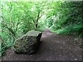 ST5399 : Boulder on an old trackbed by Philip Halling