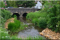 ST6834 : Bridge over the River Brue by David Martin
