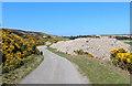NC8862 : Minor Road at Kirkton by Chris Heaton