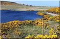 NC8863 : Loch Mor by Chris Heaton