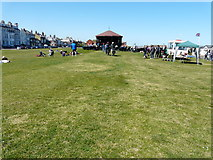 TR3751 : Concert at the Deal Memorial bandstand, Walmer Green by John Baker