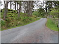 NM8365 : Minor road near to the entrance to Bellswood Lodge by Peter Wood