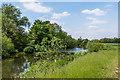 TQ1556 : River Mole by Ian Capper