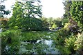 SE2854 : Pond in Harlow Carr by DS Pugh