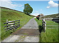 SK0999 : Cattle Grid on the old road, Tintwistle by Humphrey Bolton