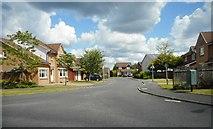 NS5159 : Parkholm Drive by Richard Sutcliffe