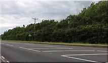 SP7632 : The A421, Singleborough by David Howard