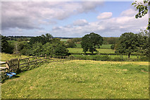 SJ4821 : The Meadows, Harmer Hill by David Dixon
