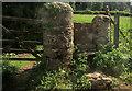 SX8755 : Stile, Lower Greenway Farm by Derek Harper