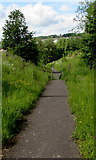 ST1599 : Inwardly-sloping barrier across a path in Aberbargoed by Jaggery
