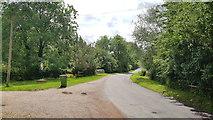 TM3193 : Church Road, Hedenham by Helen Steed